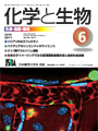 Vol.49 No.6
