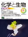 Vol.51 No.12