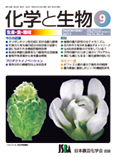 Vol.55 No.9