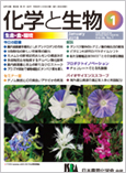 Vol.56 No.1