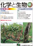 Vol.56 No.11