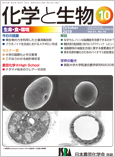 Vol.57 No.10